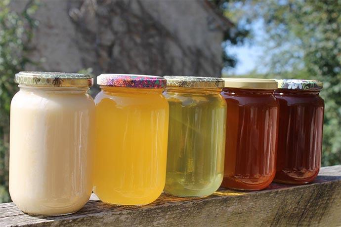 couleurs du miel